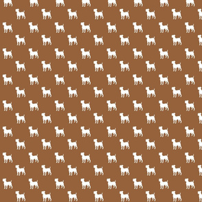 Jack Russell - brown