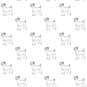 Jack Russell line drawing