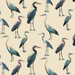 Blue Herons on Tan