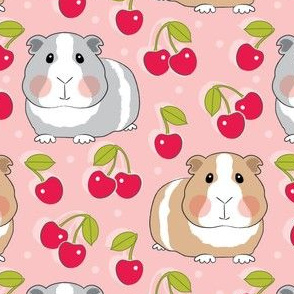 guinea-pigs-and-cherries