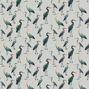 Blue Herons on Light Gray