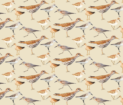 Lots of Little Sand Pipers Watercolor fabric by lauriekentdesigns on Spoonflower - custom fabric