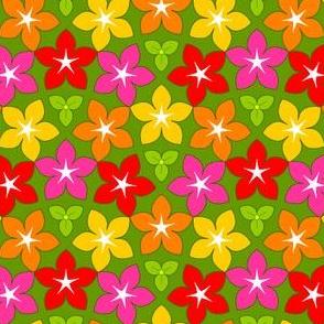 07451787 : U53 flowers 4 : joyful