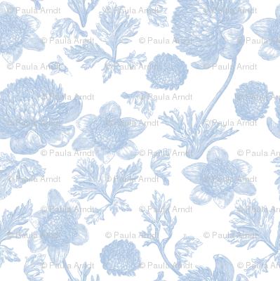 Edda Toile blueberry 1