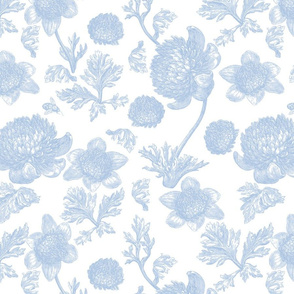 Edda Toile blueberry 1