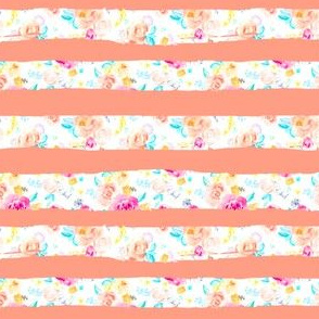 Coloras Stripes