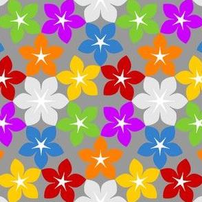 07453821 : U65 flowers 1 : rainbow