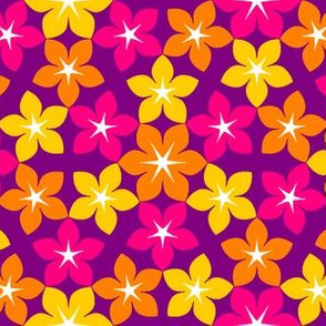 07453855 : U65 flowers 3 : karmic