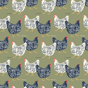 farmhouse chickens D-01