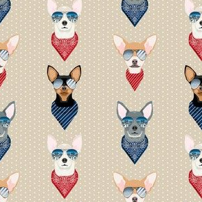 chihuahua sunglasses summer beach dog breed fabric tan