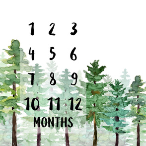 Pine tree forest milestone growth blanket