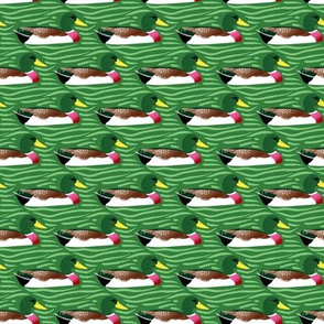 Ducks in a row - green