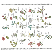 abc wildflowers 42 x 36 wholecloth nature floral
