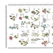 Rrabc-wildflower-tea-towel-linen_shop_thumb
