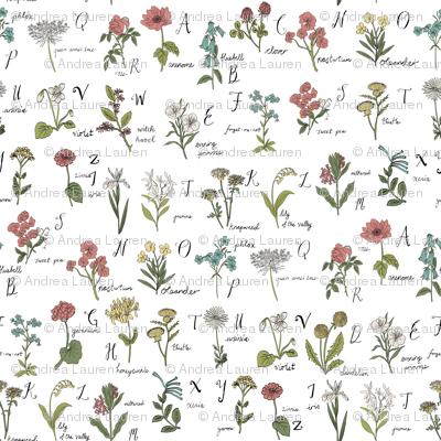 abc wildflowers botanical floral