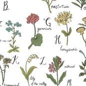 Rrabc-wildflowers_shop_thumb