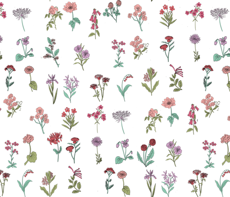 wildflowers nature botanical flower fabric colors fabric by andrea_lauren on Spoonflower - custom fabric