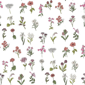 wildflowers nature botanical flower fabric pink
