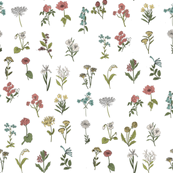 wildflowers nature botanical flower fabric white