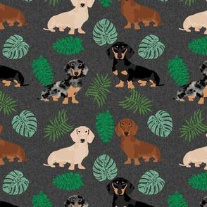 dachshund tropical monstera leaves dog breed fabric dark