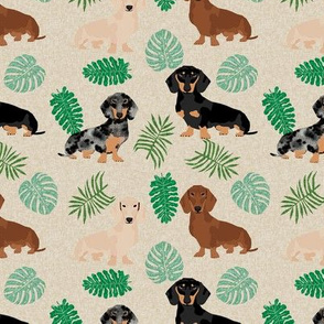 dachshund tropical monstera leaves dog breed fabric tan