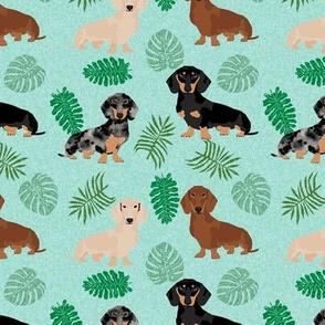 dachshund tropical monstera leaves dog breed fabric blue mint