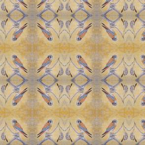 Kestrel, Falcon Sand