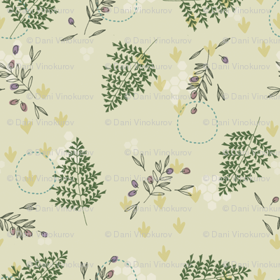 Ferns-olives-01-rgb_preview