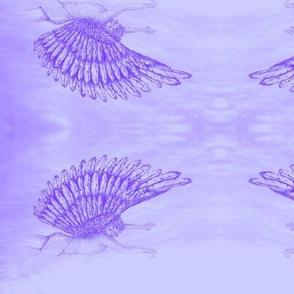Winged cherub  violets on cloud-