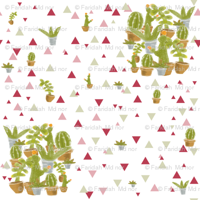 cactus triangle red grey