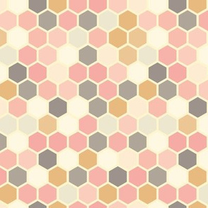18-07Q Hexagon Blush pink rose gray mustard