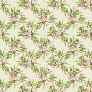 Pop Pink Eucalypt