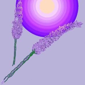 Lavender stippling-Purple SunBloom-