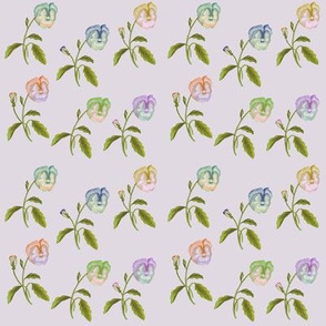 Pansy Meadow Green Leaves Pale Lilac