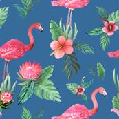 flamingo dream garden