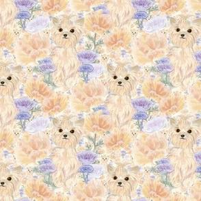 Floral Yorkie Rose & Poppy