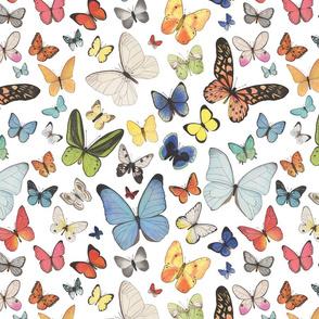 Reversed Watercolor Butterflies
