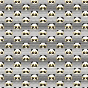 (MICRO SCALE) pandas with glasses - grey stripes gold C18BS
