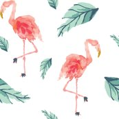 Ribd-flamingo-plam-01_shop_thumb