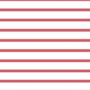 Indy Bloom Design berry stripe B