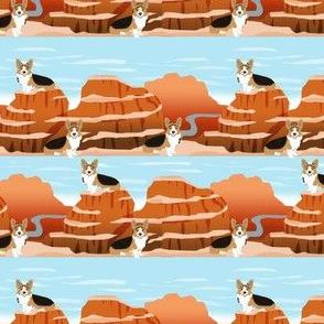 corgi tricolored grand canyon aspen
