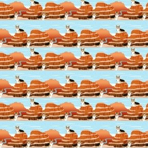 corgi tricolored (smaller scale) grand canyon aspenm