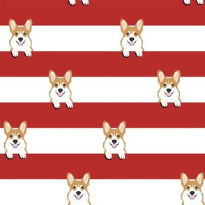 corgi stripes red