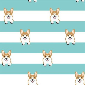 corgi stripes mint