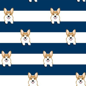 corgi stripes navy
