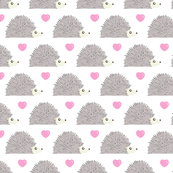Hedgehog Love - White Background
