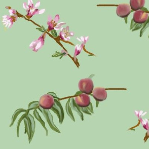 peaches and blooms