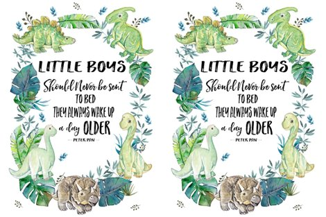 R2-to-1-yard-of-minky-27-x36-little-boys-dino_shop_preview