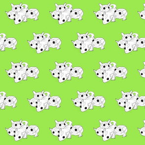 Outline of four sugar gliders on green