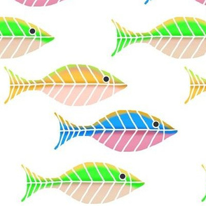 Colorful Swimmers / fish